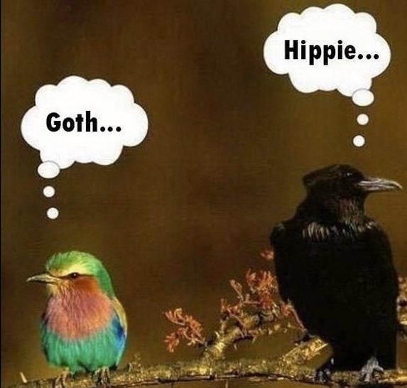 Everyone needs to get along!