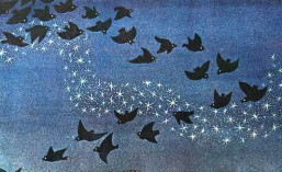 cropped-birds-and-stars0092.jpg