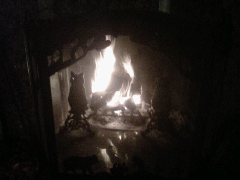 Fire of comfort, dreams, passion and home