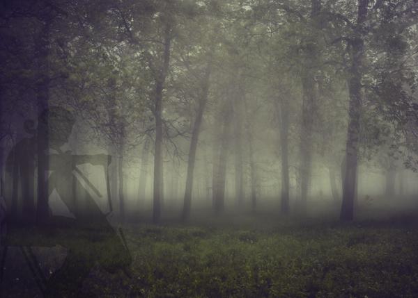 woodscello.jpg