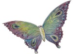 blu butterfly