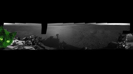 Cat on Mars