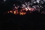 sundaysunset