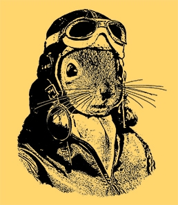 Squirrels Rock the Goggles