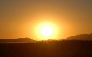 Summer-Sun-550