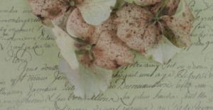 letter_flowers