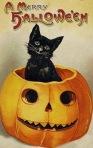 halloween kittie