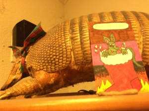 Pigadillo with an Armadillo