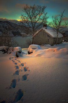 parrish snow