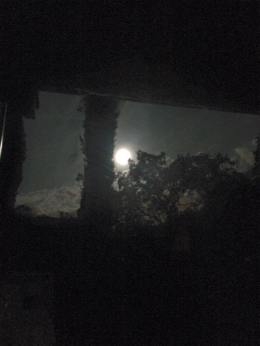 Werewolf Moon (and the dog days ofsummer)