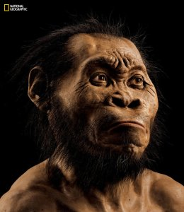 "Researchers have named it Homo naledi, because ""naledi"" means ""star"" in a local South African language."
