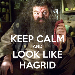 I've got the moves like Hagrid