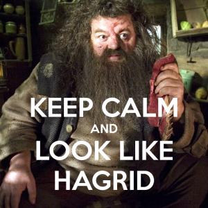 I've got the moves like Hagrid