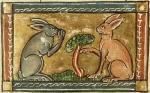 medieval-rabbits