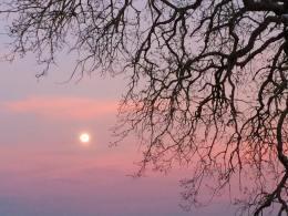 You Transfix Me Quite – Jane Eyre andVampires